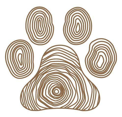 Birch Bark Dog Training